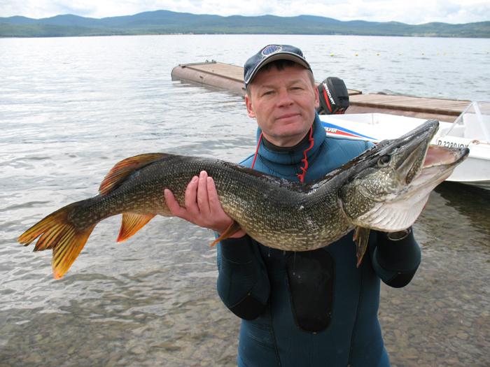 рыбалка на псковском озере сегодня видео